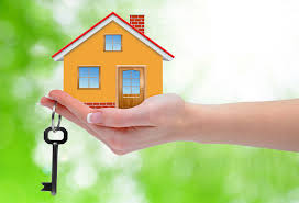 Investment Property Taxes
